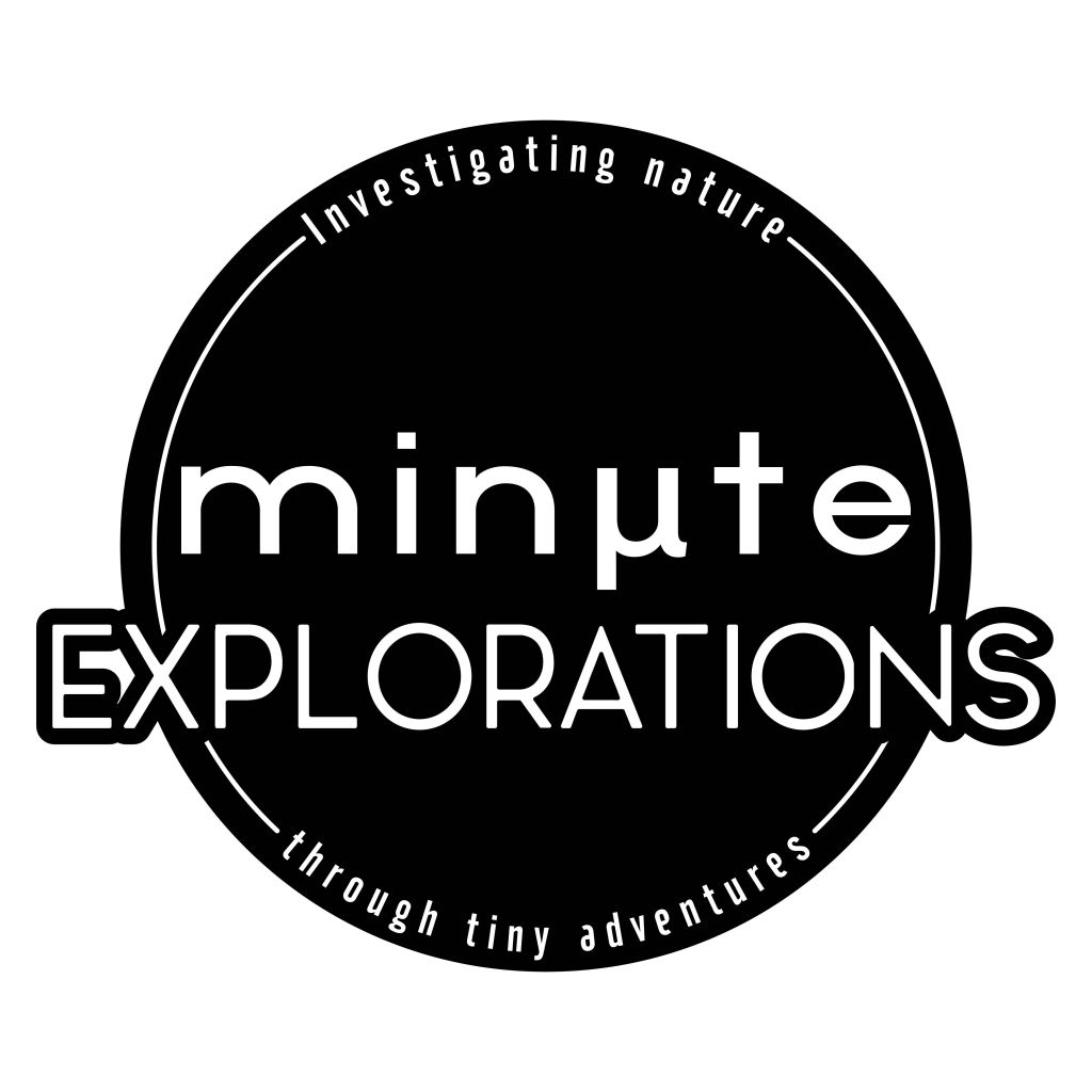 Minute Explorations logo and tagline