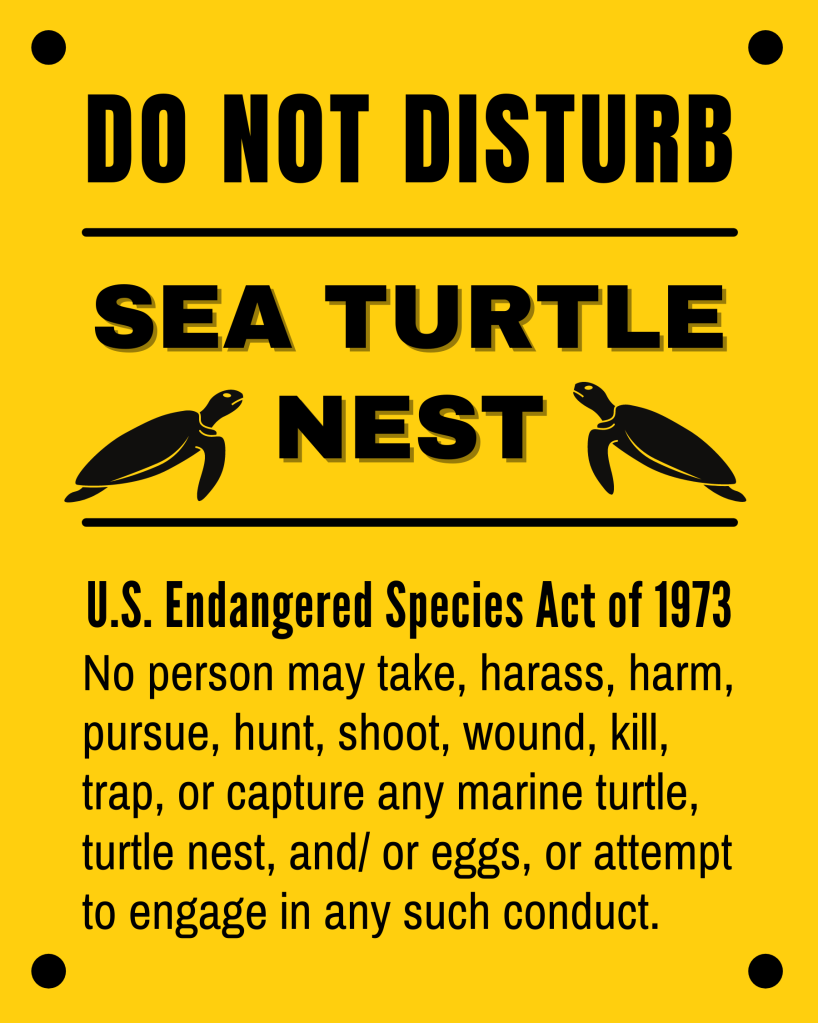 Do not disturb real sea turtle nests in the wild